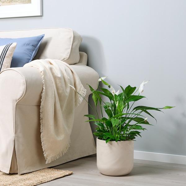 BACKSMULTRON Plant pot, in/outdoor beige/grey, 19 cm