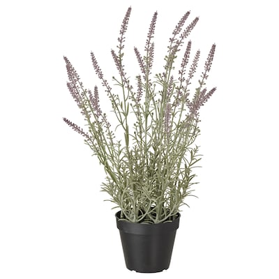 FEJKA Artificial potted plant, in/outdoor/Lavender lilac, 12 cm