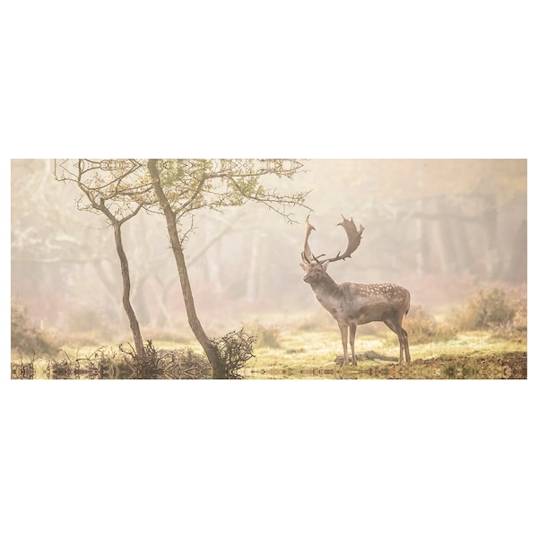BJÖRKSTA Canvas, Cervo nella radura, 140x56 cm