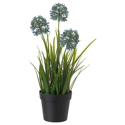 FEJKA Pianta artificiale con vaso, allium blu, 9 cm