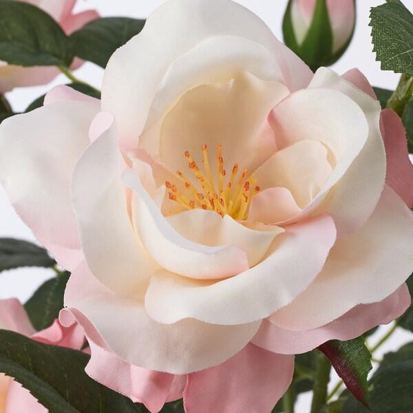 FEJKA Pianta artificiale con vaso, da interno/esterno/Rosa rosa, 12 cm