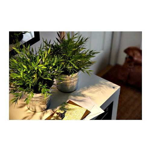 FEJKA Pianta artificiale IKEA Ha la stessa freschezza naturale di una vera pianta e conserva la sua bellezza anno dopo anno.