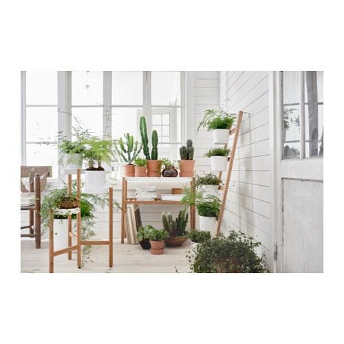 Super SATSUMAS Supporto da parete con 5 portavasi - IKEA EG15