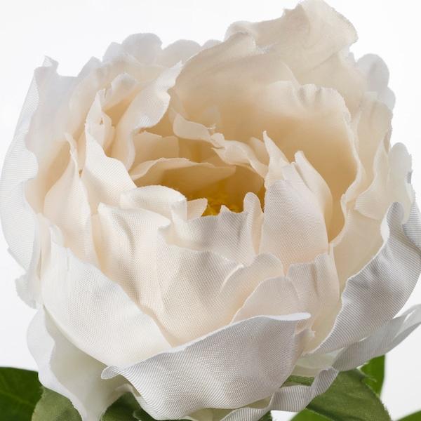 SMYCKA Fiore artificiale, peonia/bianco, 30 cm