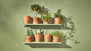 Vasi per fiori e fioriere
