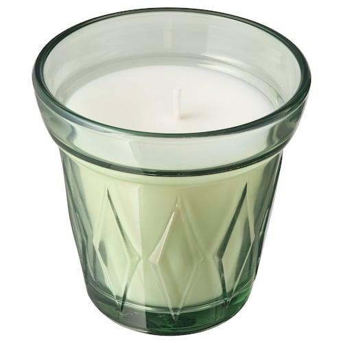 VÄLDOFT شمعة معطرة في كأس ندى الصباح/أخضر فاتح 8 سم 8 سم 25 س