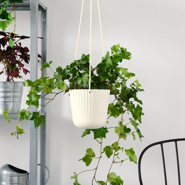 ÄPPELROS Hanging planter, in/outdoor off-white, 12 cm