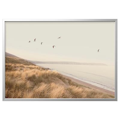 BJÖRKSTA Picture with frame, birds by the beach/aluminium-colour, 140x100 cm
