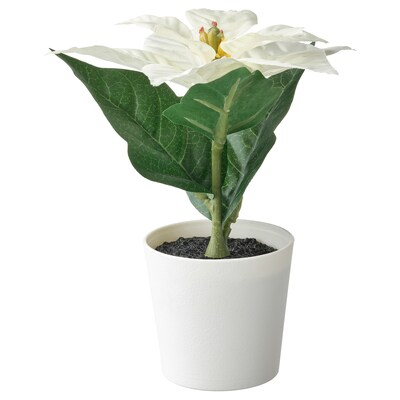 FEJKA Artificial potted plant with pot, in/outdoor Poinsettia/white, 6 cm