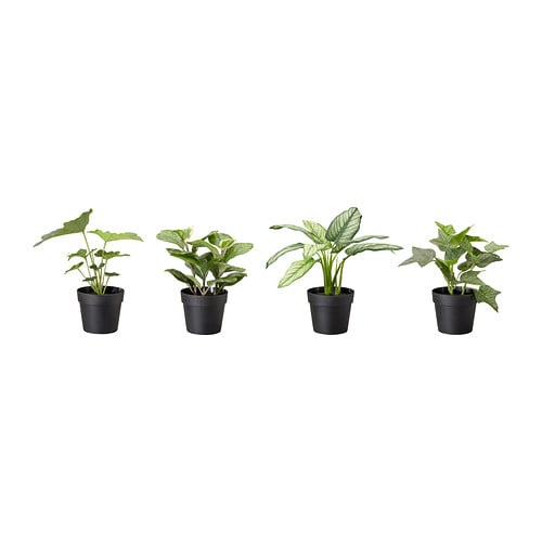 FEJKA Artificial potted plant   Lifelike artificial plant that remain just as fresh-looking year after year.