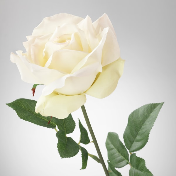 SMYCKA Artificial flower, rose/white, 75 cm