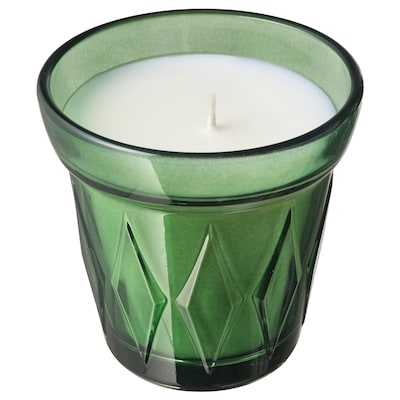 VÄLDOFT Scented candle in glass, Thyme/dark green, 8 cm