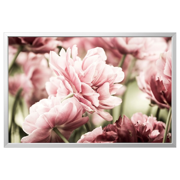 BJÖRKSTA Picture with frame, light pink tulips/aluminium-colour, 118x78 cm