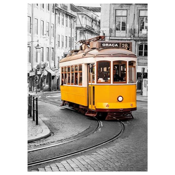 EDELVIK Poster, Tram in Lisbon, Portugal, 50x70 cm