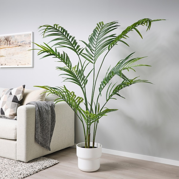 FEJKA Artificial potted plant, in/outdoor Kentia palm, 23 cm