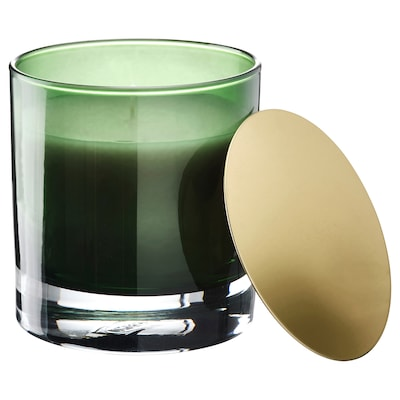 OMRÅDE Scented candle in glass, Pine and moss/green, 10 cm