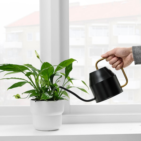 VATTENKRASSE Watering can, black/gold-colour, 0.9 l