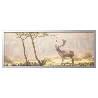 BJÖRKSTA ビョルクスタ アート フレーム付き, 森の中の空き地の鹿/アルミカラー, 140x56 cm