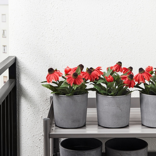 BOYSENBÄR ボイセンベール 鉢カバー, 室内/屋外用 ライトグレー, 12 cm