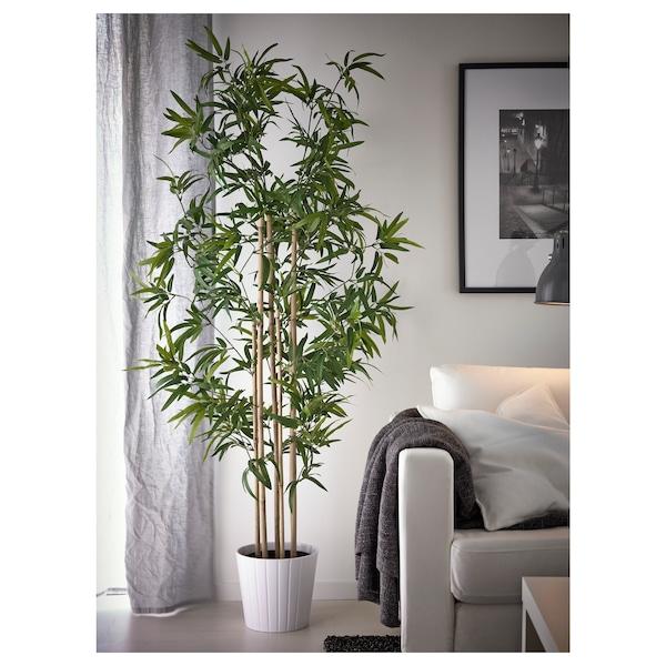 FEJKA フェイカ 人工観葉植物, 室内/屋外用 竹, 23 cm
