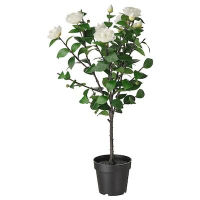 FEJKA フェイカ 人工観葉植物, 室内/屋外用/ツバキ ホワイト, 19 cm