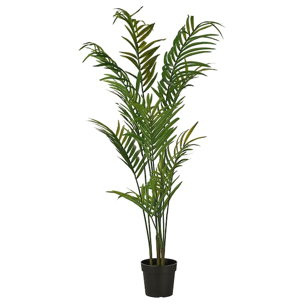 FEJKA フェイカ 人工観葉植物, 室内/屋外用 ケンチャヤシ, 23 cm