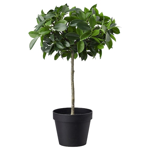 フェイカ 人工観葉植物 室内/屋外用/ベンジャミン 幹 12 cm 44 cm