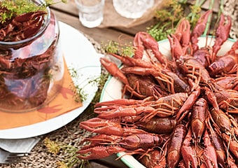Swedish Crayfish party collection