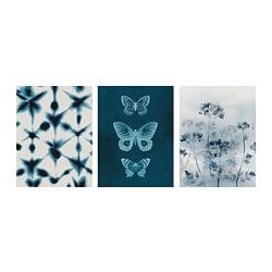 BILD 빌드 포스터, blue butterflies