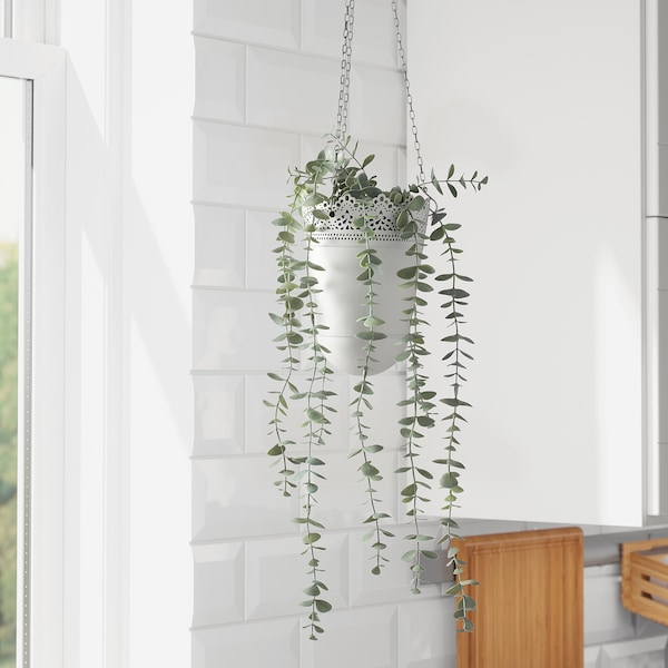 FEJKA artificial potted plant in/outdoor hanging/eucalyptus 9 cm 58 cm