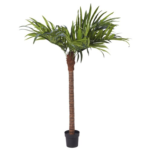 FEJKA artificial potted plant in/outdoor/palm 21 cm 180 cm