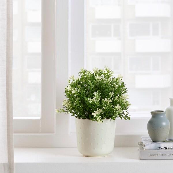 SESAMFRÖN آنية نباتات, داخلي/خارجي أبيض-عاجي, 9 سم