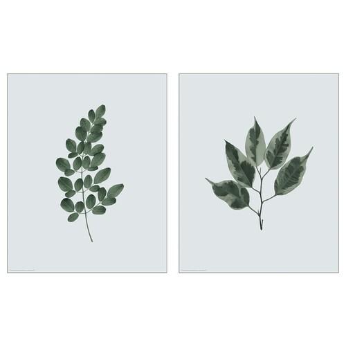 BILD صورة اوراق خضراء 40 سم 50 سم 2 قطعة