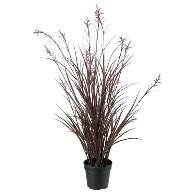 FEJKA Artificial potted plant, in/outdoor field grass, 15 cm