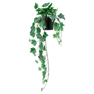 FEJKA Artificial potted plant, in/outdoor/hanging Ivy, 12 cm
