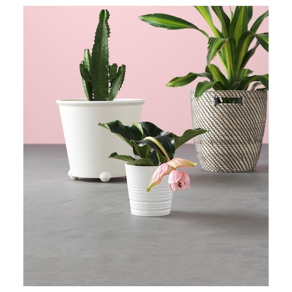 IKEA PS FEJÖ آنية نباتات ذاتية السقي, أبيض, 32 سم