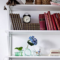 categories storage - wall shelves