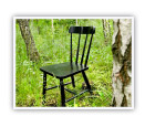 black chair in a forest