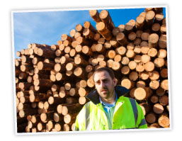 man standing in front of big pile of tree trunks