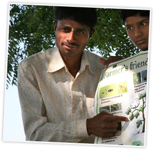 indian farmer showing plan on sustainable farming