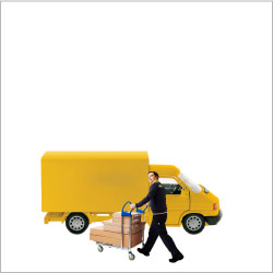 Picking and delivery service