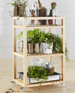 MOLGER trolley filled with plants and plant pots