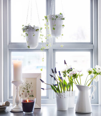 Pretty window arrangement