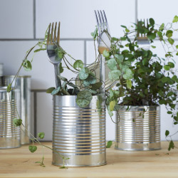 Stainless steel forks used as plant support in a tin can