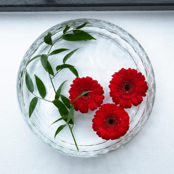 Round glass bowl with red gerberas floating in water