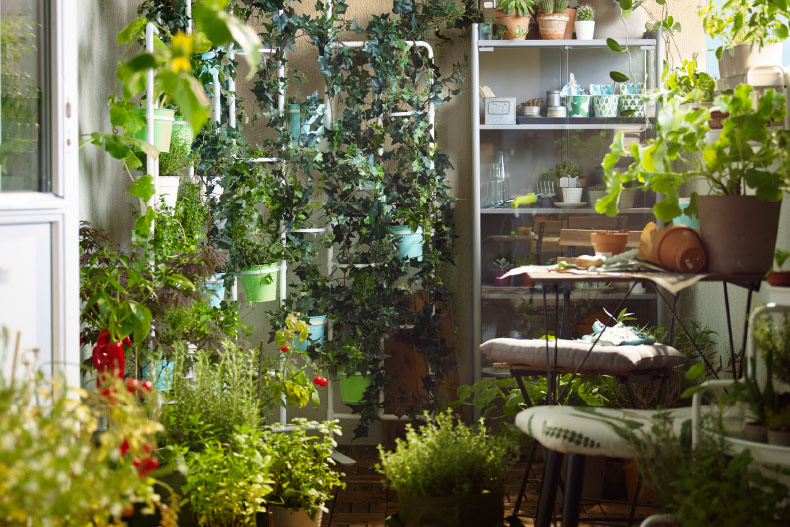 A balcony filled with green plants, herbs, plant pots and plant stands.