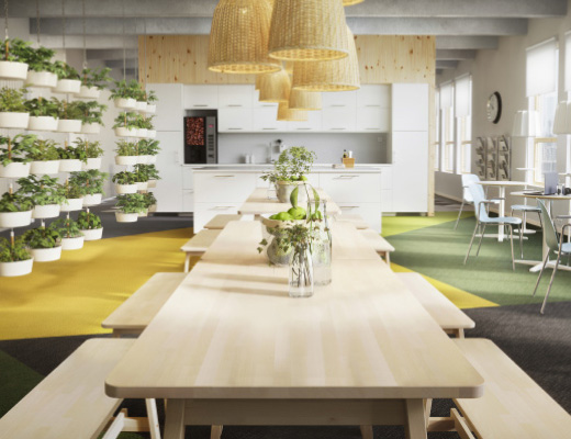 An office lunch room furnished with tables and benches in white stained solid birch.