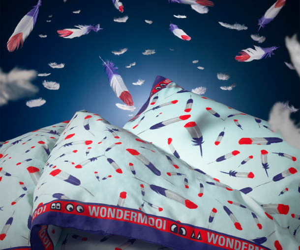 Close-up of a quilt cover and pillowcase with a feather pattern in red, blue and white.