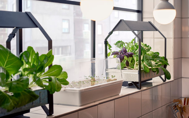 Two indoor mini greenhouses and a sprout box in a kitchen window.