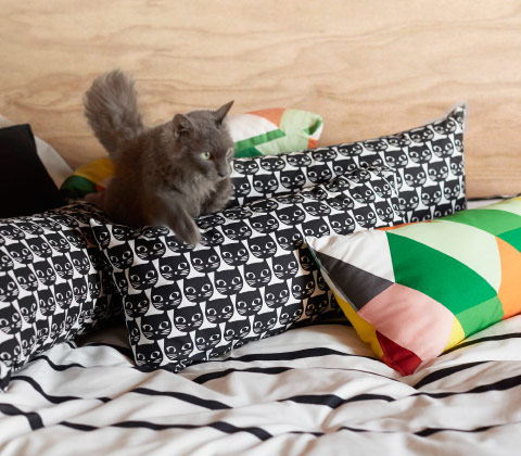 Cushions with black cat face pattern.
